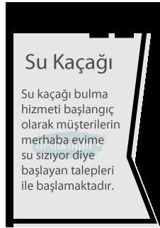 adalar_su_kacagi_note